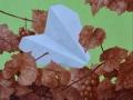 paveikslas_Lektuvėlis 50x38 cm