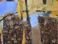 paveikslas_PASISLĖPUSI VYNUOGĖSE 80x120 cm